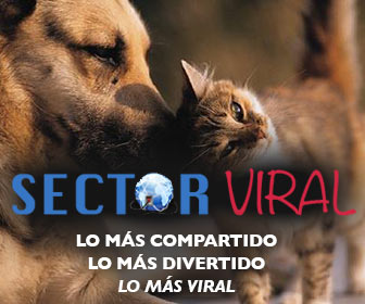 Sector Viral